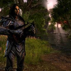 Altmer w The Elder Scrolls Online