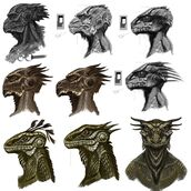 Argonian Faces
