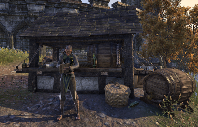 File:Guild Store (Trade Legion).png