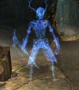 Signore della Morte Draugr Labyrinthian