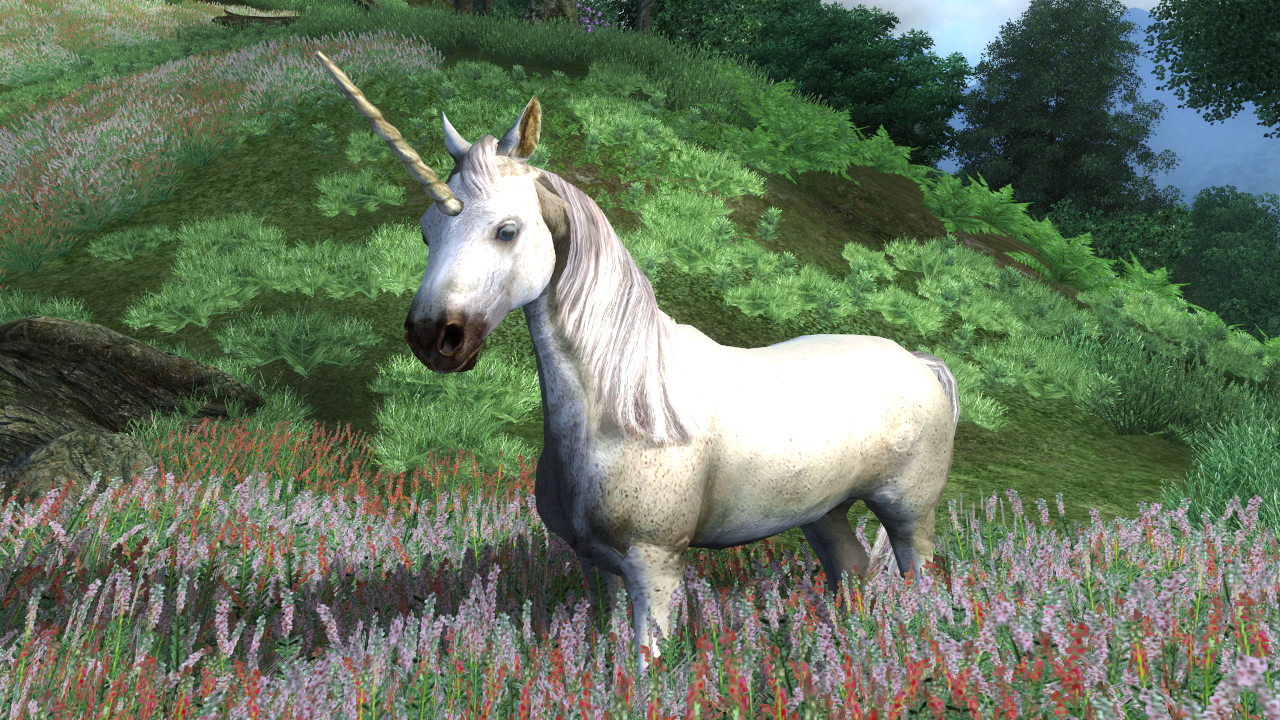 Unicorn | Elder Scrolls | FANDOM powered by Wikia