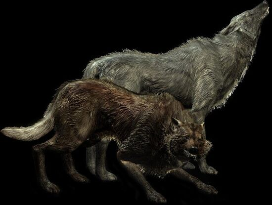 Волк (Skyrim)