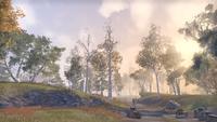 Рифт (Online) — Закат в лесу