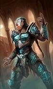 Altmer Protector card art