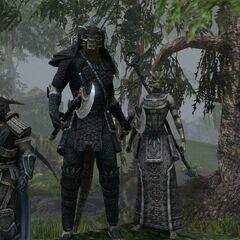 Argoniańscy żołnierze z gry The Elder Scrolls Online