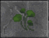 Ginko Leaves (Daggerfall)