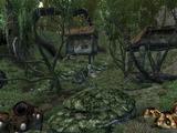 Hardscrabble Camp