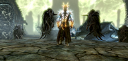 Miraak - Aspetto del Drago