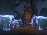 Treehenge