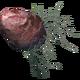 Пепельный батат (Dragonborn)