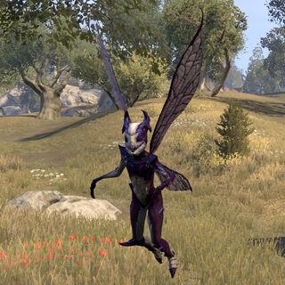 Orchid Nixad z gry The Elder Scrolls Online