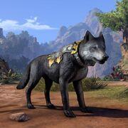 Волк охотника на древних драконов