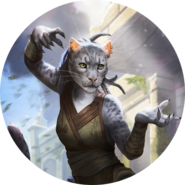Khajiit avatar bob 1 (Legends)