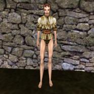 Простая рубашка (Morrowind) 5 (жен)
