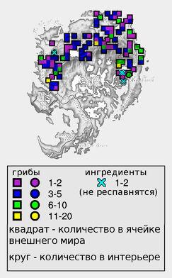 Гигантская спора ежовика лазурного (количество)