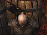 Dragonguard Orland