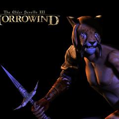 Khajiit z gry The Elder Scrolls III: Morrowind