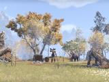 Лагерь великанов (Рифт)