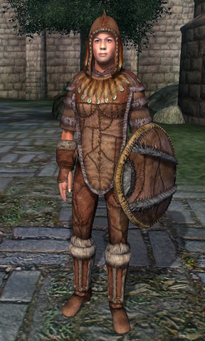 File:Fur Armor (Oblivion).png