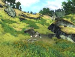 Лагерь Свеча Тролля (Oblivion)