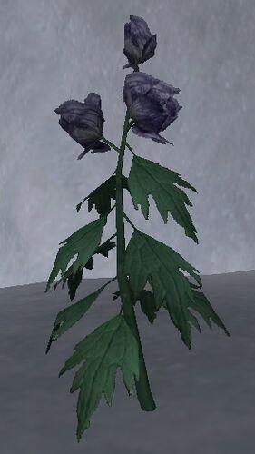 Wolfsbane Petals Elder Scrolls FANDOM Powered By Wikia - Where does wolfsbane grow in the us map
