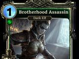 Brotherhood Assassin