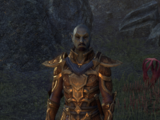 Ordinator Muron
