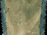 Siwobrodzi