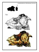 Гуар (концепт-арт TES III)
