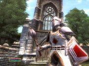 Рыцарь девяти