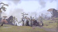 Стоунфоллз (Online) — Плодородная равнина