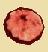 Шляпка жгучеедкой сыроежки (иконка)