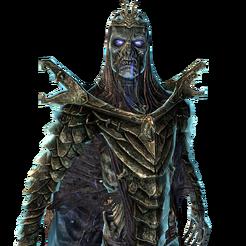 Драконий жрец 002