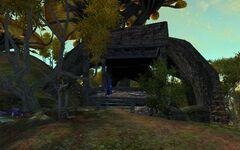 Лагерь Высоких Деревьев 1