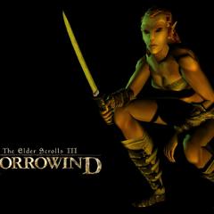 Bosmerka w TES III: Morrowind
