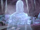 Category:Skyrim: Snow Elves   Elder Scrolls   FANDOM powered by Wikia