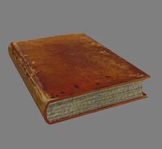 Книга (Oblivion) желтая