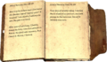 Daynas Valen's Journal Page1-2.png