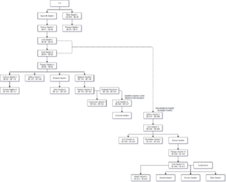DinastiaSeptim