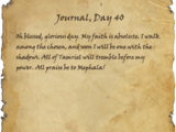 Journal, Day 40