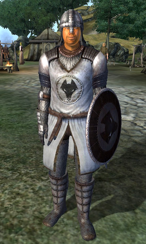 File:Kvatch Soldier.png