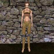 Простые штаны (Morrowind) 18 (жен)
