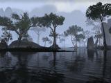 Туман и тени