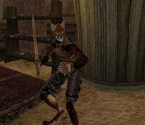 Khajiit Morrowind