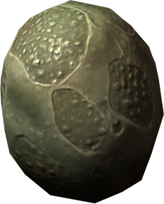 File:Slaughterfish egg.png