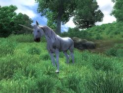 Хирсин — Единорог