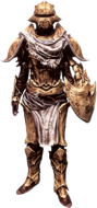 Костяная броня стражника (ж)