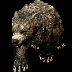 Пещерный медведь Cave Bear 001