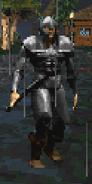 City Guard (Daggerfall)