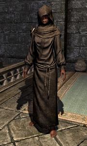 Hooded Grey Robes 00010CFEA